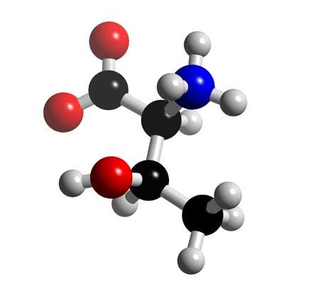 Threonine Structure